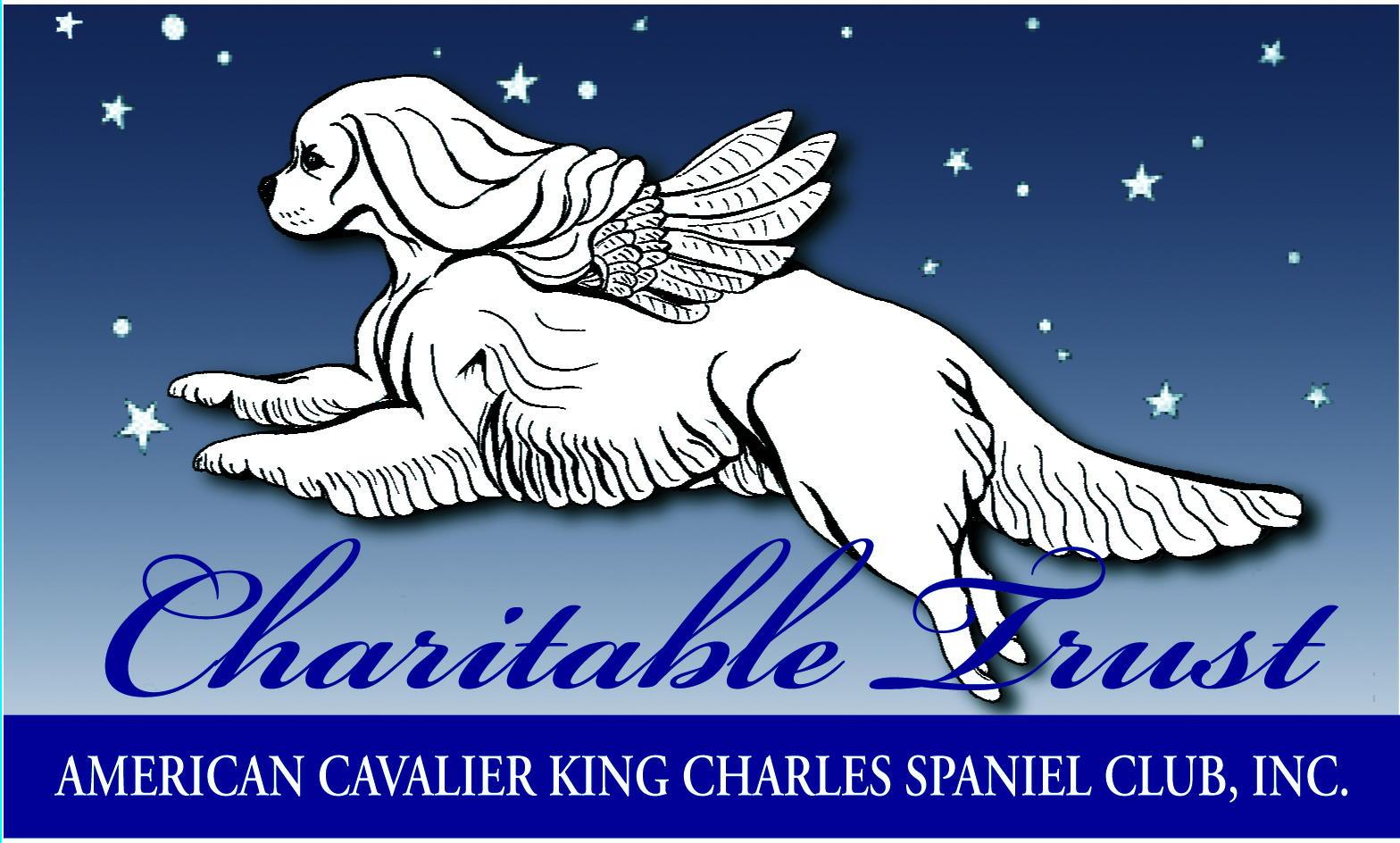 Charitable Trust Donation $1000