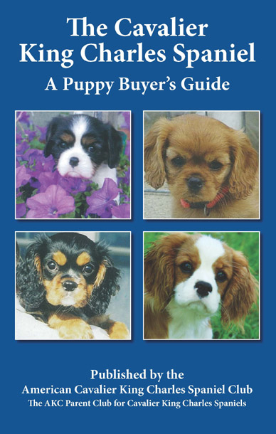 Puppy Buyer's Guide 12 Copies